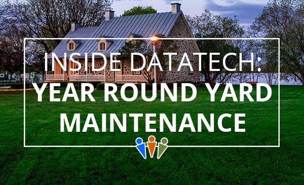 yard maintenance, lawn care